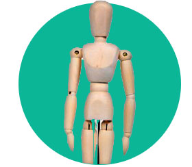 visual aid mannequin