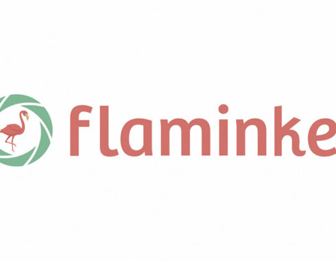 flaminke logo